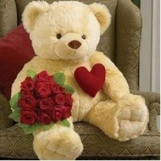 teddy red rose bunch-230x230