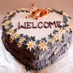 welcome to cake