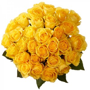 0001249_bunch-of-yellow-roses