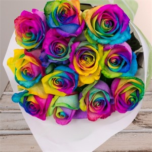 12-Rainbow-Roses_alt1