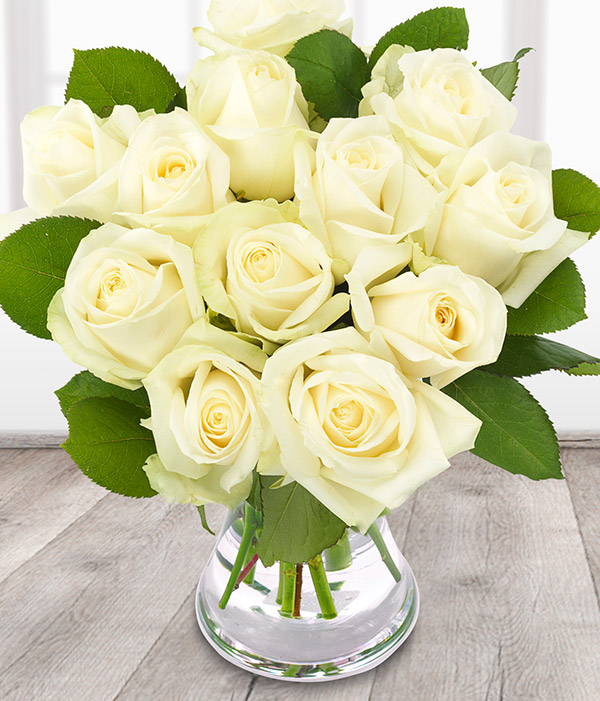 Online white roses perhaps because of its association with these two quite various figures white rose representation is fairly broad perhaps because of its link to the mightylinksfo