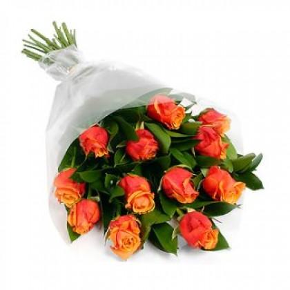 orange_roses-420x420