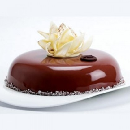 Yummy Chocolate-420x420